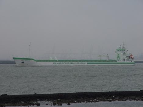 KOOPVAARDIJ / NL zeeschepen: 28-2-12
